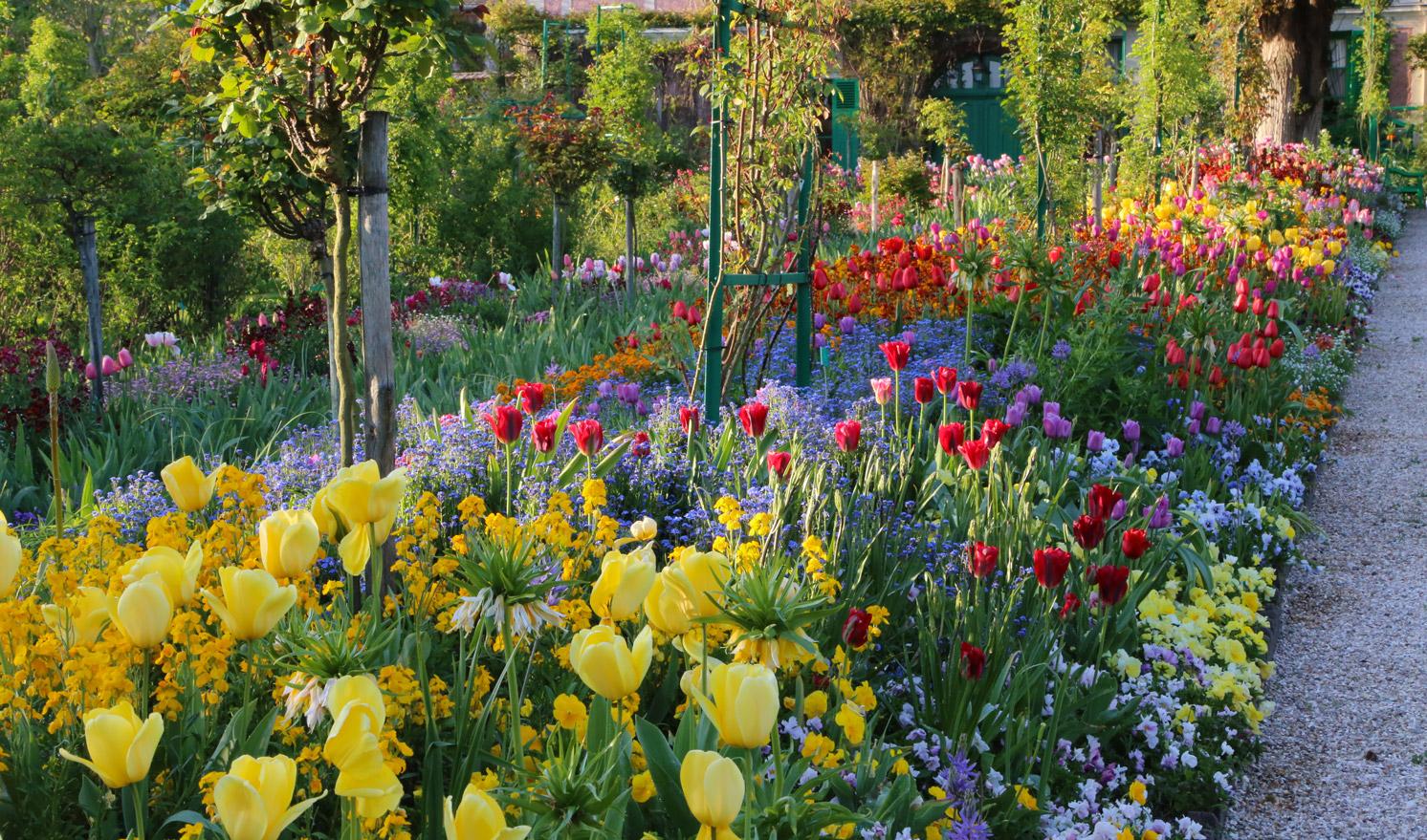 Flower garden paintings - Fondation Claude Monet Giverny Flowers Fondation Claude